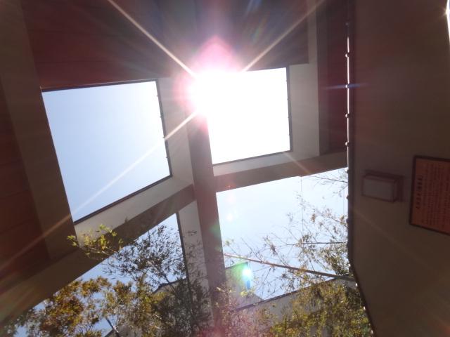 太陽の自然光も自然とカラダの自然治癒力をアップしてくれるものです。