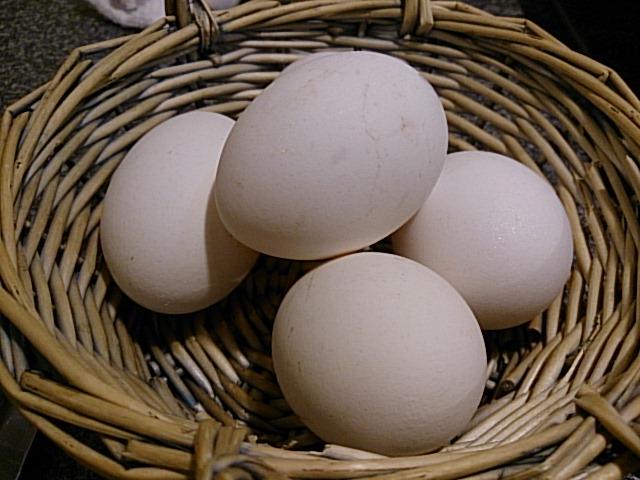 なんと生卵サービス!